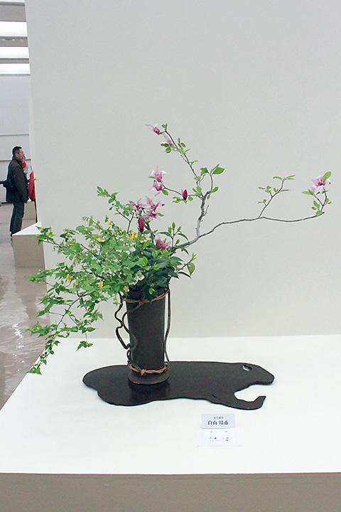 徳島代表者展 4