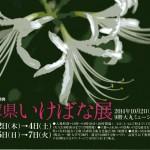 兵庫県展(20141002)