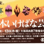 日いけチケット005